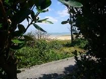 フクギのアーチを抜けて、ありまばるビーチへ・・・