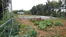 ありまばる農園