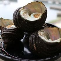 *漁港直送の新鮮な海の幸を宝楽焼で(イメージ:サザエ)