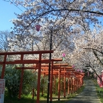 丸高稲荷神社