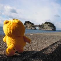 ポンタ☆白浜で円月島を見つめるバージョン