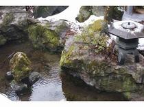 中庭の湧水
