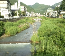 夏の横湯川