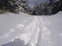 雪は無条件に私たちを迎えてくれて