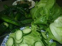 自家製無農薬サラダ