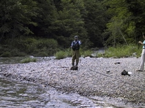 渓流、さてさて、釣れてますか