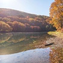 """水面に写りこむ紅葉も楽しめる、自然豊かな""""鴫の谷地沼""""♪"""