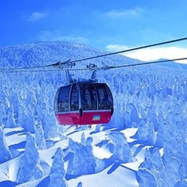 【蔵王ロープウェイと樹氷原♪】ロープウェイを降りれば目の前には樹氷群が広がります♪