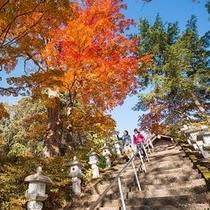 ホテルから徒歩5分、酢川温泉神社で紅葉散策♪