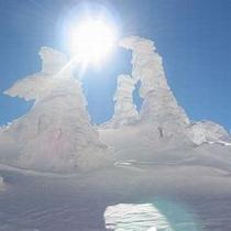 冬の風物詩♪樹氷は12月〜3月上旬が見頃♪