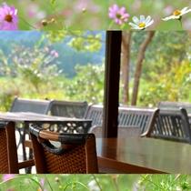 レストランから外の眺め