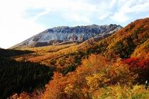大山鍵掛峠からの紅葉