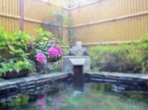 露天風呂 紫陽花