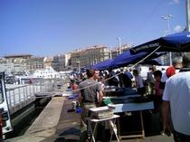 マルセイユ 魚市場