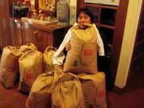 お米作り1年目