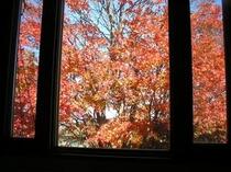 秋色の窓(例)