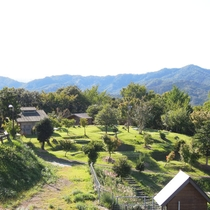 自然いっぱいの環境で四季折々の景色を楽しめます