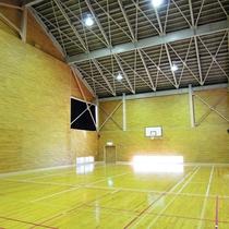 体育館(バスケ、バレーボール、卓球、フットサルなど)※有料