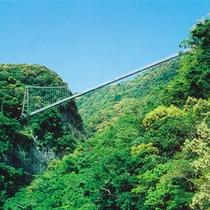 照葉大吊橋【てるはおおつりばし】:当宿より車で約20分