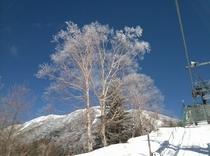 ピラタススキー場からの眺め
