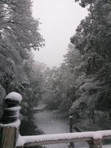 雪化粧した伊勢神宮