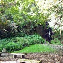 *宿の裏に流れる滝。自然の中でゆったりと過ごせる環境。