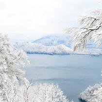 *雪化粧した十和田湖。夏とはまた違った姿を見せてくれます。