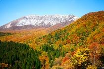 秋の大山-鍵掛峠より