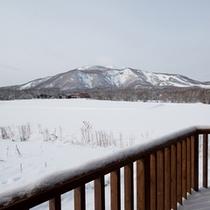 *【4BR/Washinosu】部屋からの眺め。羊蹄山、アンヌプリを望むことができます。
