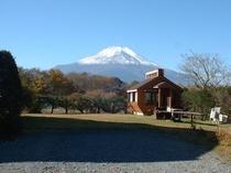 庭からの富士山