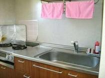 シンプルな作りのキッチン、食器洗い洗剤、スポンジも付いています。