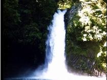 伊豆の名滝「浄蓮の滝」