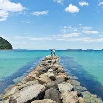 菊ヶ浜の海