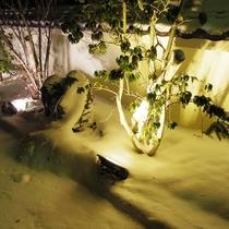 美萩駐車場横にある庭木のライトアップ~ささやかな光で優しく照らしています♪~