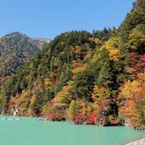 楽高瀬ダムの紅葉