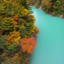 楽高瀬渓谷の紅葉