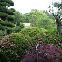 *庭園/季節の草花を眺めるのも楽しみのひとつ。