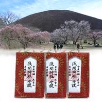 【マタニティプラン】大室山浅間神社の安産祈願のお守り付