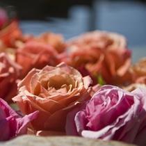 露天風呂にバラを浮かべて優雅な気分に♪