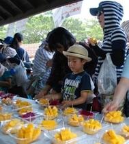 マンゴー祭り