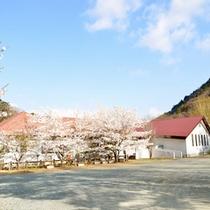 *外観/まだ肌寒い季節、青い空と桜の景色に包まれるヒュッテ。