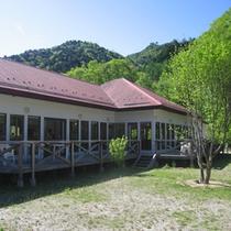 *館内/レストランを外から見たところ。鮮やかな緑に包まれています。