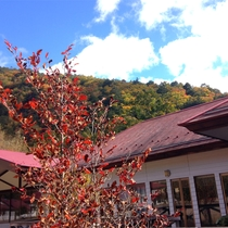 *紅葉/例年見頃10月下旬 当館を囲む山々も美しい紅葉で彩られます。