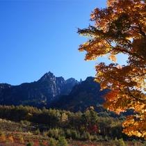 *紅葉/例年見頃10月下旬 みずがき山と美しい紅葉はまさにおすすめシーズンです!