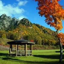 *紅葉/例年見頃10月下旬 青空とみずがき山と紅葉 ゆったりした時間をどうぞ