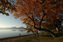 Lake Toya Autumn 1