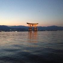 厳島神社鳥居(夜)1
