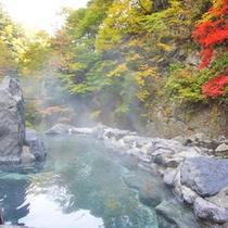 *紅葉シーズン(見頃:例年10月上旬~下旬頃)
