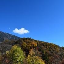 秋の紅葉も見どころがすぐそばに