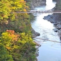 ラウンジから紅葉の鬼怒川渓谷